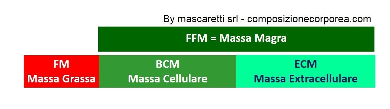BCM_ECM